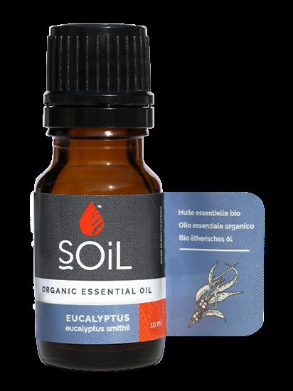 Picture of Ulei Esential Eucalipt  (Eucalyptus smithii) SOiL 100% Certificat Organic