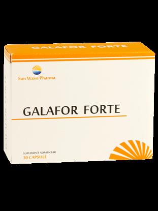 Immagine di Galafor Forte